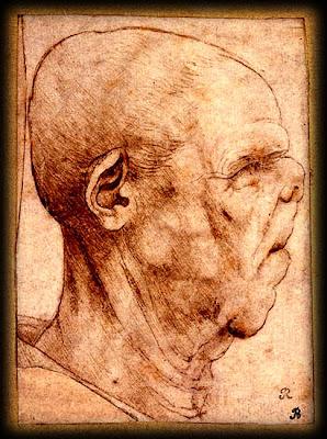 Disability Aesthetics Da Vinci And The Grotesque