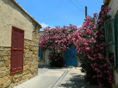 Plimbare Cipru: pe strazile din Nicosia sunt multe flori