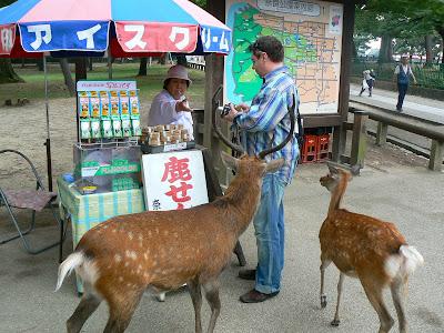 Obiective turistice Japonia: cumparand biscuiti de cerb in Nara