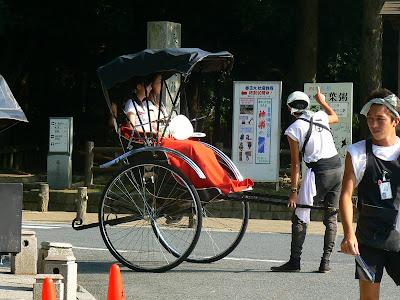 Imagini Japonia: ricse in Nara