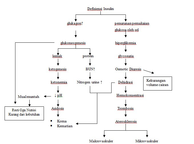 Mengenali Gejala Diabetes Melitus Tipe 2