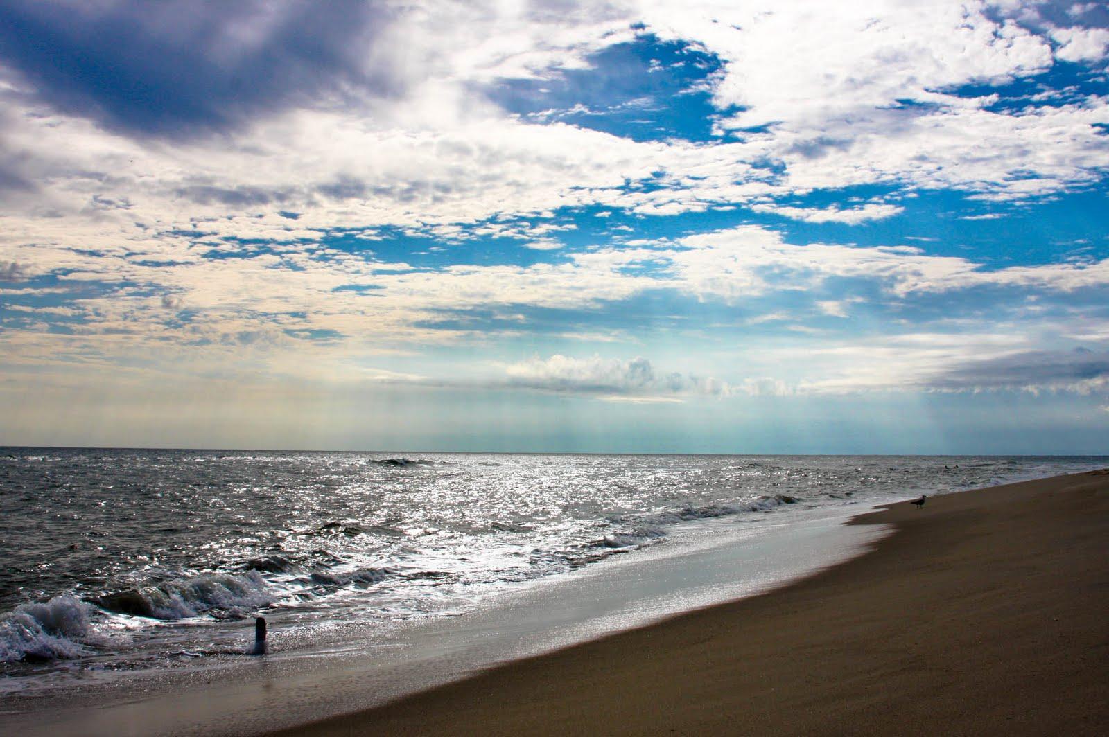 Harmony Song Nantucket Beach
