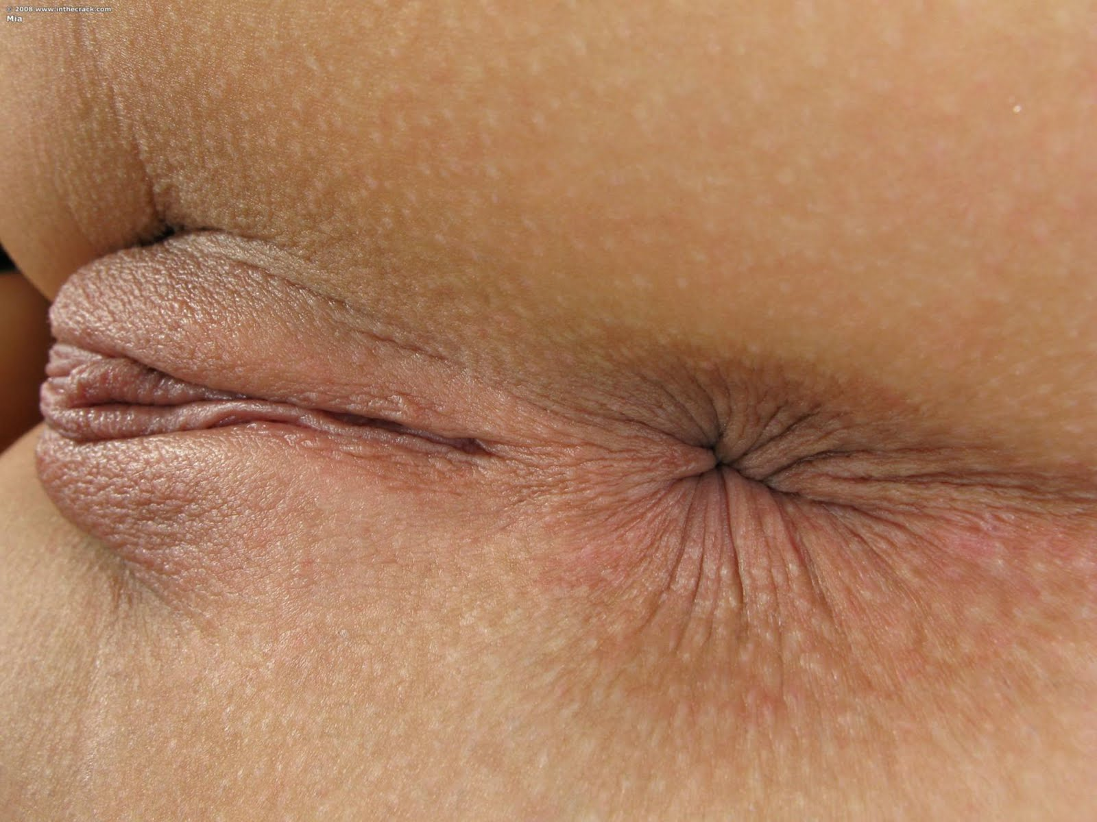 Obscene pussy close up pic