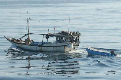 EagleSpeak: British commandos kill Somali pirates in