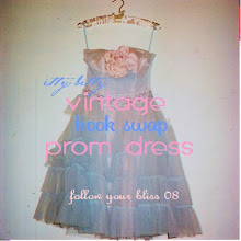 itty bitty prom dress book