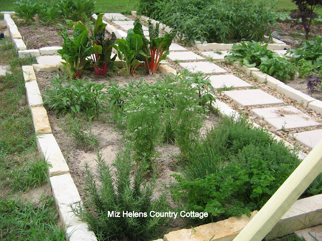 What About All Those Herbs:Part One at Miz Helen's Country Cottage