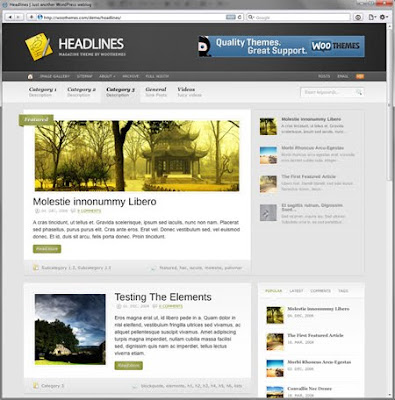 Woothemes Headlines Free Premium WordPress Themes 2010