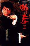 Sinopsis The Legend of Drunken Master 2