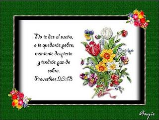 Resultado de imagen para Proverbio No. 20