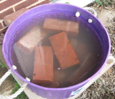 Soaking the bricks in preparation for the mortar