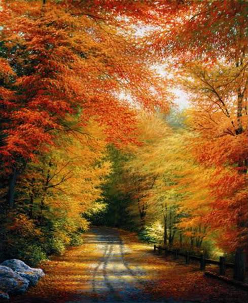 East Coast Guyz: Share Your Fall Colors!~