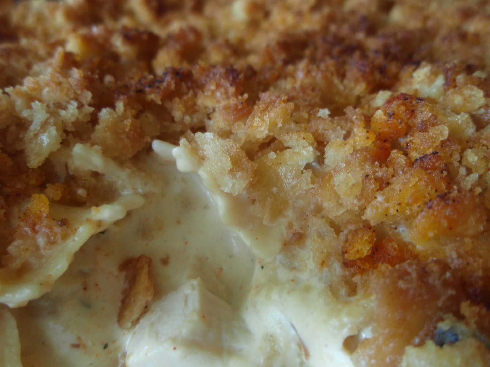 A southern grace chicken noodle casserole for the soul chicken noodle casserole for the soul forumfinder Images
