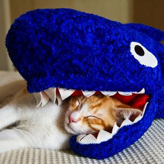 Devildinosaur Classic Geek Is It Bean Bag Shark Week