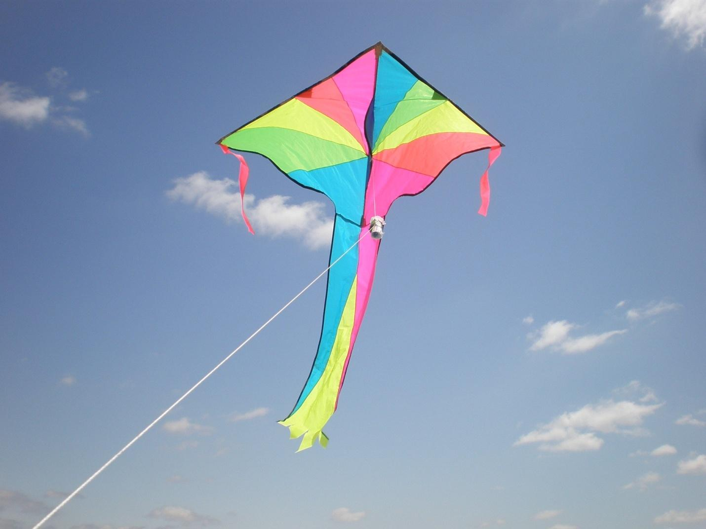 Camaraderie Its Kite Flying Time