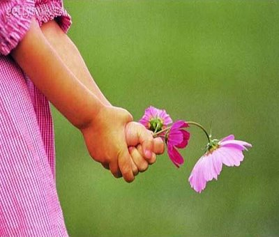 Vivendo No Centro Da Vontade De Deus Flores Em Vida