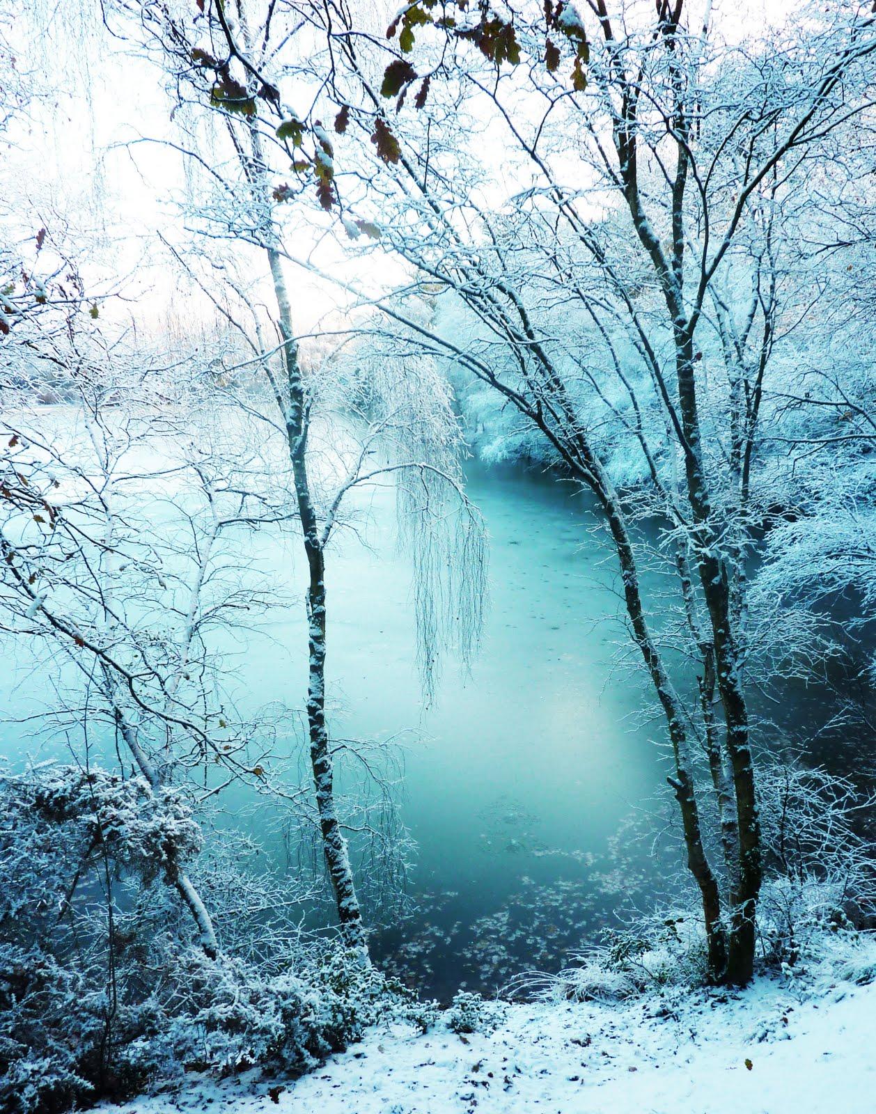 Winona Harrod BA Hons: Winter Wonderland