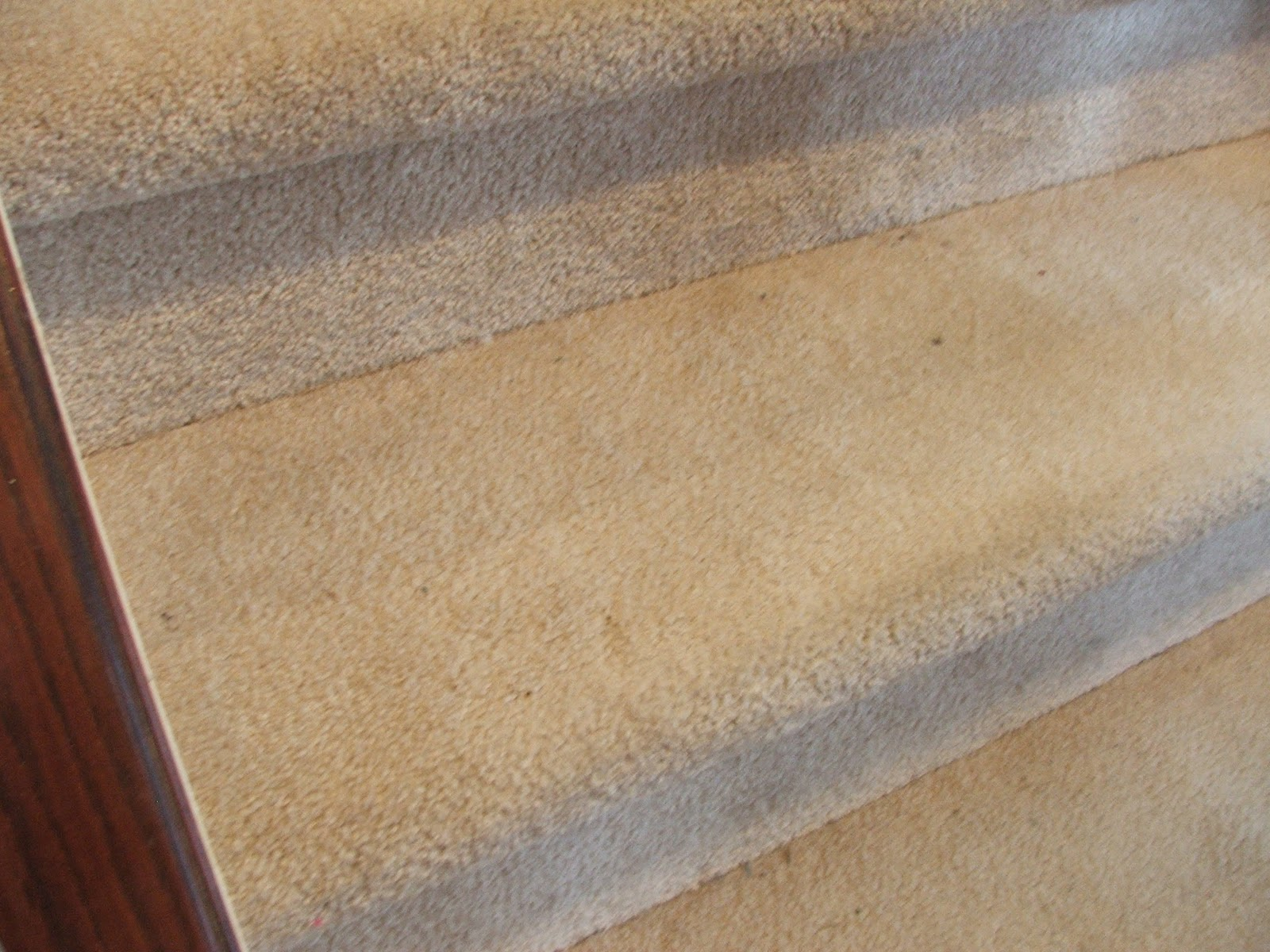 Remodelaholic | Under $100 Carpeted Stair To Wooden Tread ...