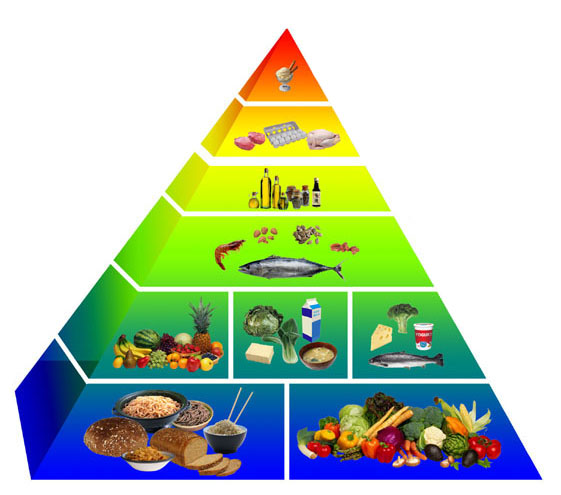 DASH Food Pyramid