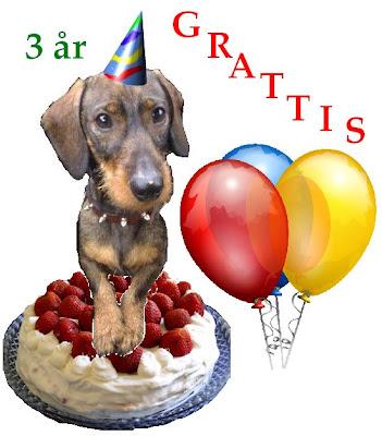 grattis på 3 årsdagen Fröken Eko: Stort grattis till födelsedagskorven! grattis på 3 årsdagen