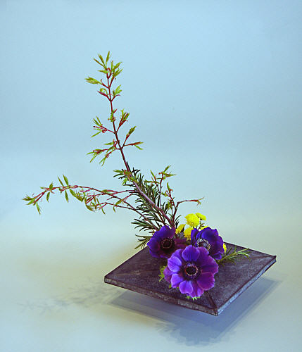 Flower Arrangements Basics: Flowers And Gifts: Flower Arrangement-Moribana Basic Upright