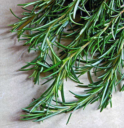 Mother's Kitchen: January Spice Rack Challenge: Rosemary