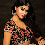 Hot And Spicy Shriya Saran