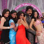 Nagaarjuna With 6 Hot Girls