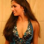 Parvathi Omanakuttan Miss World Runner Up