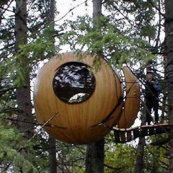 Ball Tree House Lol