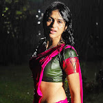 Sexy South Indian Actress Shraddha Das Wet In Pink Transparent Half  Saree...