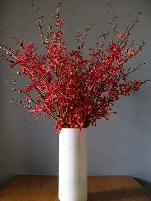 Melanie Bloomer S Florals A Modern Red And White Flower