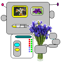 Bot Botany – K-Means and ggplot2