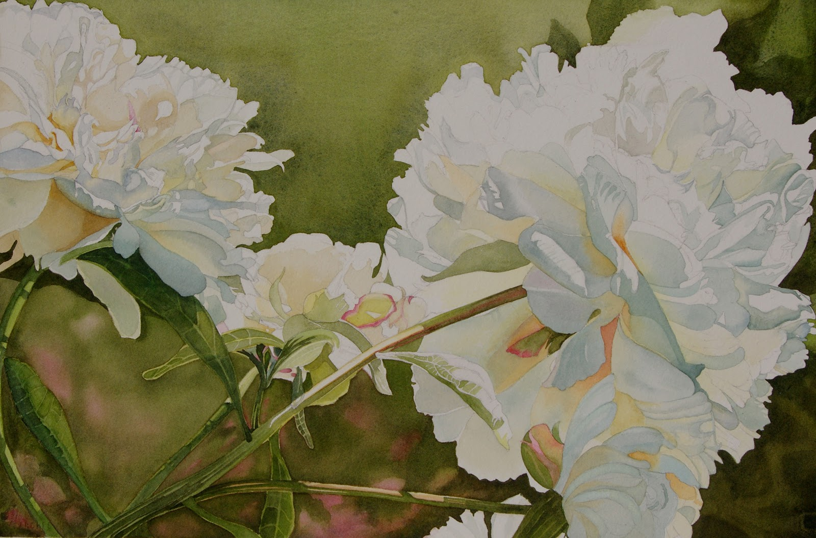 Watercolor Mania: White Peony demo