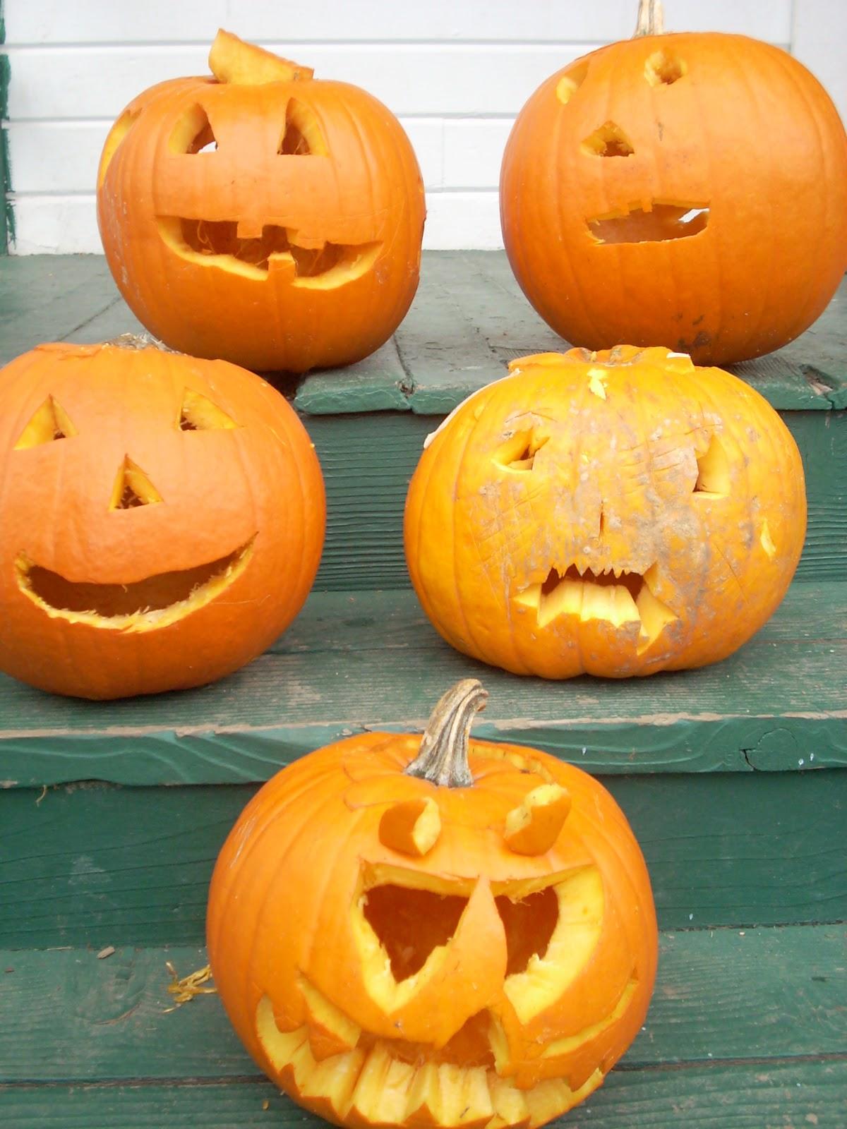 Five Little Pumpkins   Your Own Beeswax