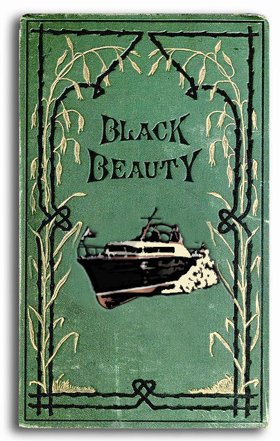 A review of anna sewells the project gutenberg extext of black beauty