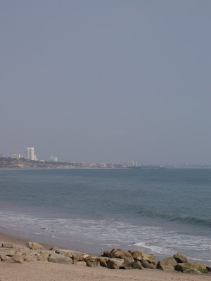 View of Santa Monica from the beach