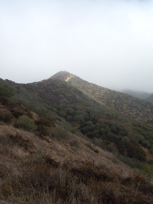 Runyon Canyon's mist capped ridges