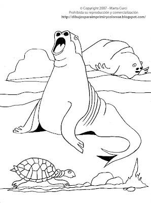 Dibujos Para Colorear Animales Marinos Dibujo De Lobos