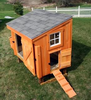 Improved Chicken Coop