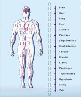 beneficios desintoxicacion ionica