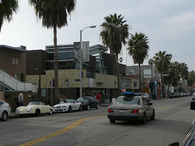 Experiencing Los Angeles: A Walk Down Abbot Kinney Blvd