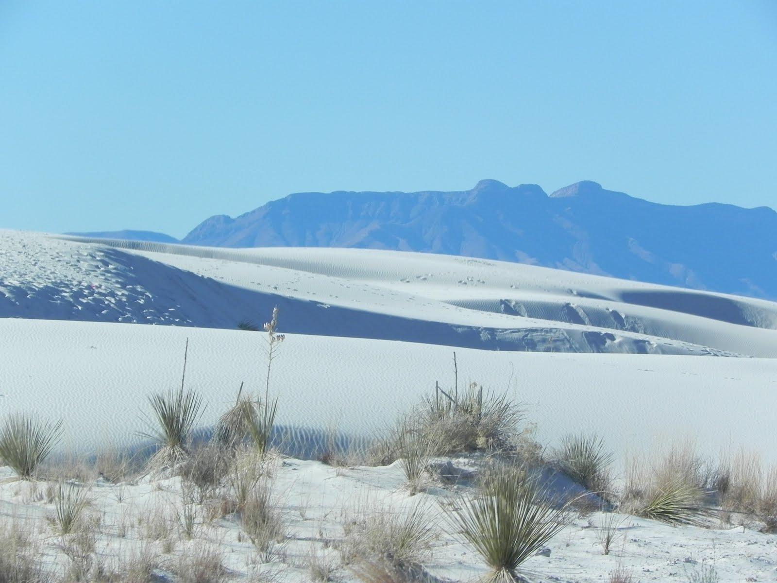 White Sands National Monument // ADVENTR.co