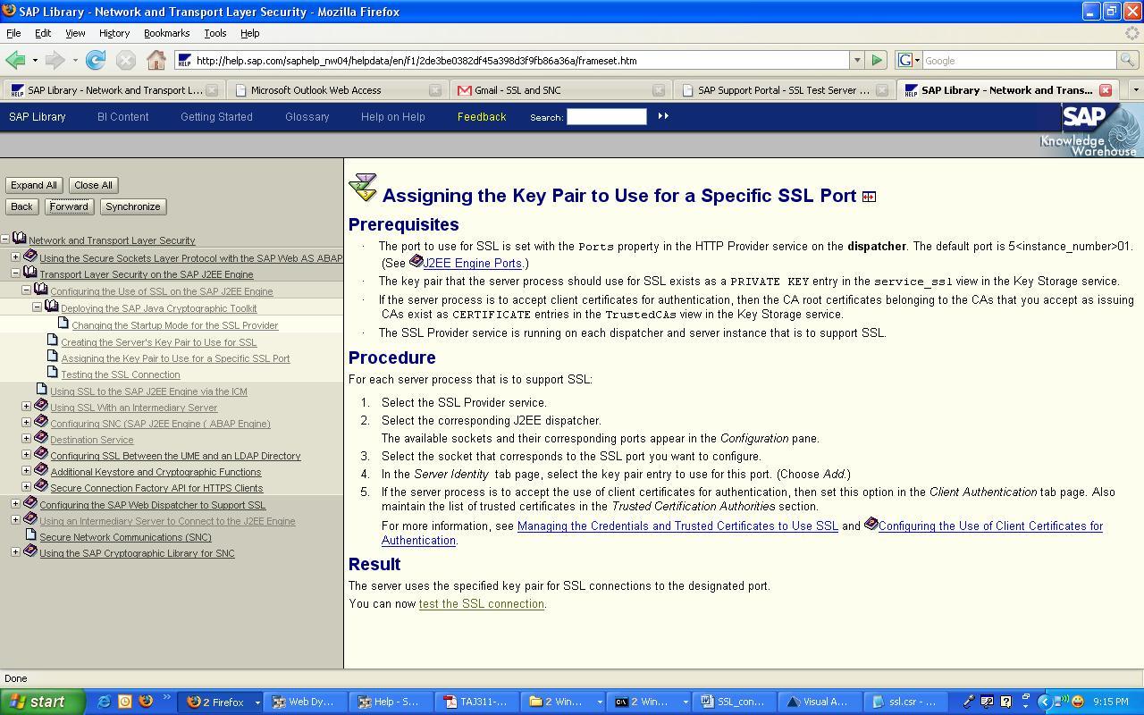 SAP Netweaver Portal: November 2009