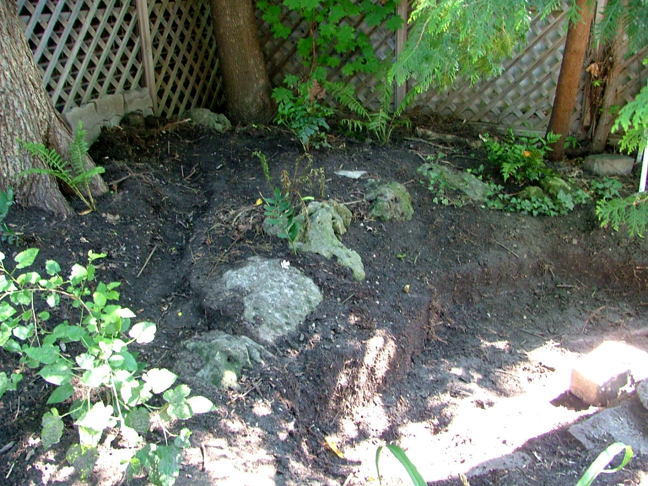 Building a backyard stream and pond: Mid-flight