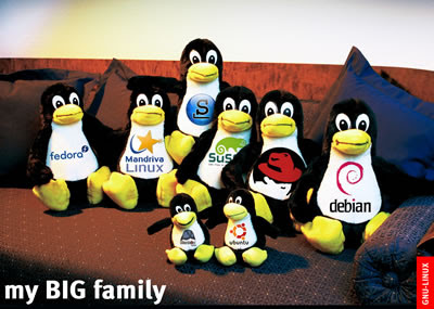 https://i2.wp.com/3.bp.blogspot.com/_H-s0-vq6GBE/SpX8fwTsHgI/AAAAAAAAAiA/fmi15nZDGNQ/s400/poster_linux_big_family1.jpg