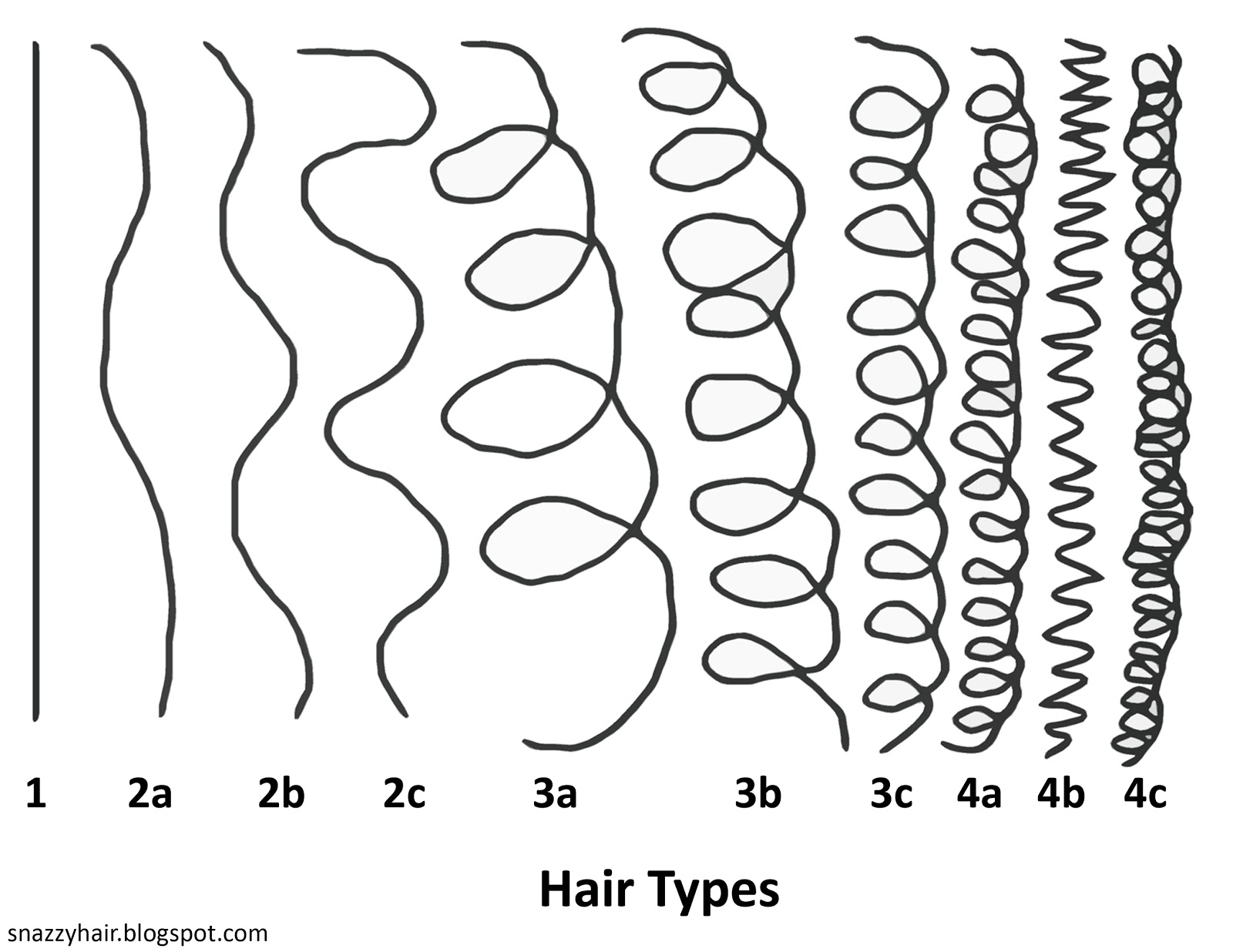 Sheila S Naptural Hair Journey What Is Your Hair Type