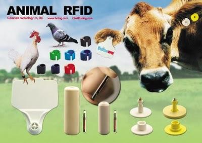 usda dropping 'national animal identification system'?