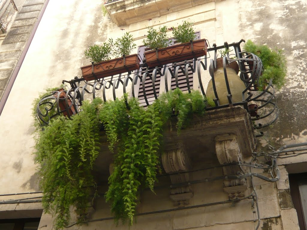 Balconi fioriti a Ortigia _Siracusa  BLOSSOM ZINE BLOG