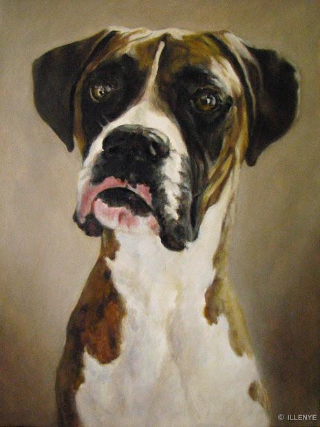 Jeanne Illenye . Dog Portrait Boxer