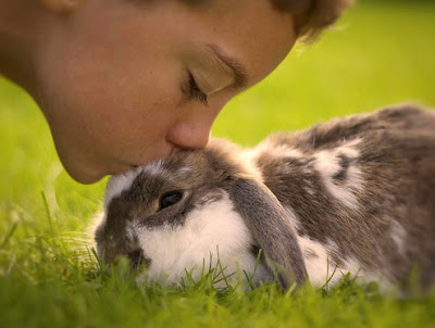 Cute Hd Mobile Wallpaper Download Kids Fun Activities With Pets Kissing